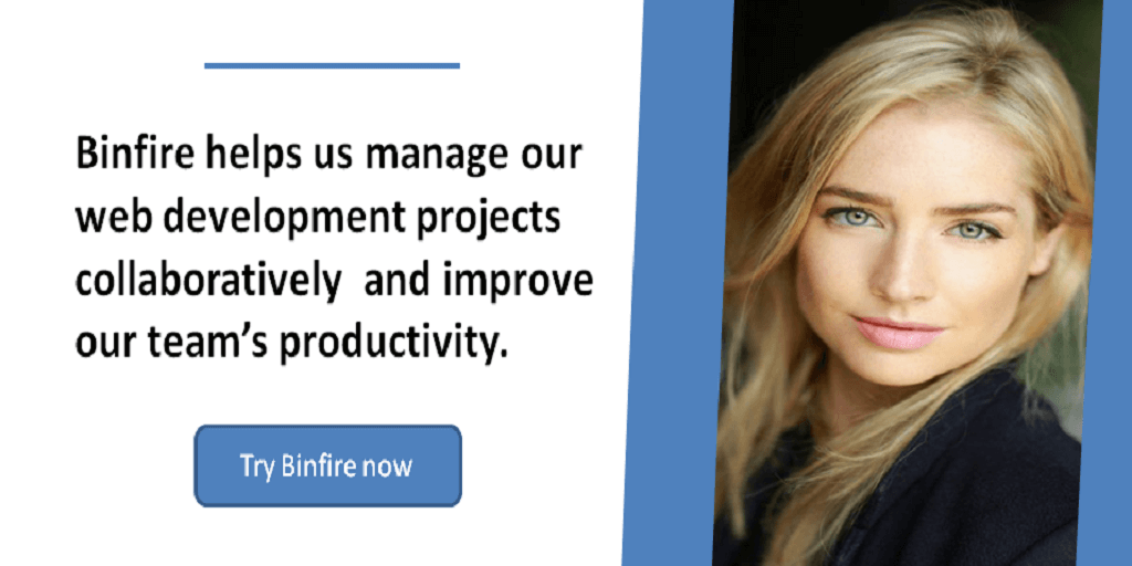 project management software for web development